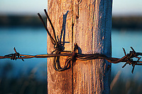 Barbed wire fence and fencepost, Qu'Appelle Valley Saskatchewan