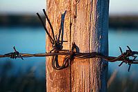 Barbed wire fence and fencepost, Qu'Appelle Valley Saskatchewan