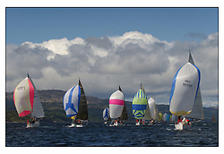 The third days racing at the Bell Lawrie Yachting Series in Tarbert Loch Fyne ..Perfect conditions finally arrived for competitors on the three race courses...Class 3 fleet downwind. GBR9230R, 2204C, GBR8694,  GBR3742.