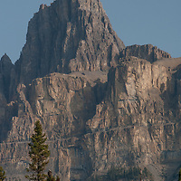 Eisenhower Tower, a pinnacle of Castle Mountain, looms above the Bow River Valley in Banff National Park. An osprey perches in a tree below.