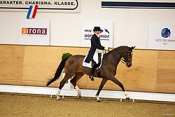 , Elmshorn Horse & Classic 28. - 30.11.2008, Allernixe 2 - Sauer, Franziska