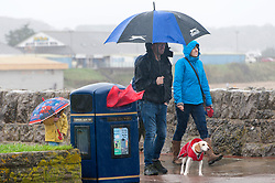 © Licensed to London News Pictures. 02/11/2019. Porthcawl, Bridgend, Wales, UK. Gale force winds and rain lash the seaside resort of Porthcawl in Bridgend, UK. Photo credit: Graham M. Lawrence/LNP