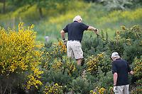 SPIJK - Zoeken naar de bal . golfwedstrijd op The Dutch golfbaan . COPYRIGHT KOEN SUYK