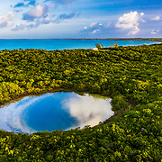 A blue hole is a collapsed cave that, cut off from the ocean, often holds unique species and rare archological finds. This is an un-named blue hole on Eleuthera Island in The Bahamas.