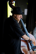 Harvie S at the 2008 West Orange OSPAC Jazz Festival