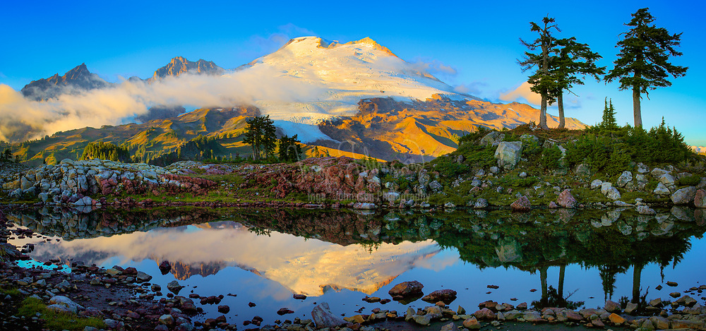 """Panorama of Mount Baker near Park Butte in the Mount Baker Wilderness <br /> ….. <br /> Mount Baker, also known as Koma Kulshan or simply Kulshan, is an active glaciated andesitic stratovolcano in the Cascade Volcanic Arc and the North Cascades of Washington State in the United States. Mount Baker has the second-most thermally active crater in the Cascade Range after Mount Saint Helens. About 31 miles due east of the city of Bellingham, Whatcom County, Mount Baker is the youngest volcano in the Mount Baker volcanic field. While volcanism has persisted here for some 1.5 million years, the current glaciated cone is likely no more than 140,000 years old, and possibly no older than 80-90,000 years. Older volcanic edifices have mostly eroded away due to glaciation. <br /> After Mount Rainier, Mount Baker is the most heavily glaciated of the Cascade Range volcanoes; the volume of snow and ice on Mount Baker, 0.43 cu mi is greater than that of all the other Cascades volcanoes (except Rainier) combined. It is also one of the snowiest places in the world; in 1999, Mount Baker Ski Area, located 8.7 mi to the northeast, set the world record for recorded snowfall in a single season—1,140 in. <br /> At 10,781 ft, it is the third-highest mountain in Washington State and the fifth-highest in the Cascade Range, if Little Tahoma Peak, a subpeak of Mount Rainier, and Shastina, a subpeak of Mount Shasta, are not counted. Located in the Mount Baker Wilderness, it is visible from much of Greater Victoria, Greater Vancouver, and, to the south, from Seattle (and on clear days Tacoma) in Washington. <br /> Indigenous natives have known the mountain for thousands of years, but the first written record of the mountain is from the Spanish. Spanish explorer Gonzalo Lopez de Haro mapped it in 1790 as the Gran Montaña del Carmelo, """"Great Mount Carmel"""".The explorer George Vancouver renamed the mountain for 3rd Lieutenant Joseph Baker of HMS Discovery, who saw it on April 30, 1792."""