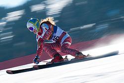SMARZOVA Petra, SVK, Giant Slalom, 2013 IPC Alpine Skiing World Championships, La Molina, Spain