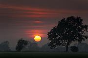 Sundown Over Funen - Island of Funen, Denmark