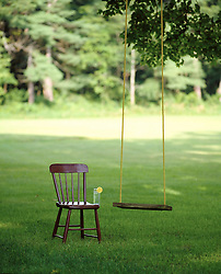 Tree swing on a summer day