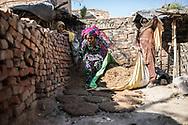 Trafic d'épouse 06032019. Haryana. Biwhat district. Village. Dans le village voisin de Kherli, Marjina, une grande femme au visage franc, occupe une petite maison d'une seule pièce qui pourrait être coquette si elle ne trahissait son dénuement. Les murs de brique, bleu pâle, ne sont protégés du ciel que par une mince plaque de tôle. On cuisine à l'extérieur, à même le sol. Il y a 25 ans, un oncle a conduit Marjina ici, depuis l'Assam, à l'insu de sa mère, peu après la mort de son père. Le voyage a pris trois jours, à l'issue desquels l'oncle lui a dit : « Tu vas vivre ici ». « Il a promis de revenir me voir quelques jours plus tard, mais il ne l'a jamais fait. Il a touché 8 000 roupies (100 euros) pour me vendre à un homme. » Marjina s'est retrouvée la femme d'un chauffeur routier, aujourd'hui décédé. Ce matin-là, assises en tailleur, une douzaine de femmes s'y serrent les unes contre les autres, dont plusieurs tiennent des bébés contre elles.