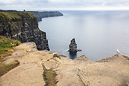 View from the top of the sheer Cliffs of Moher; O'Brien's Tower, background