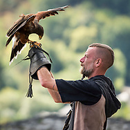 "Bouillon, Luxembourg, Belgium, August 2018. A Falconer with his falcon in Chateau de Bouillon. Built on three rock pitons overlooking the Semois river, the Bouillon Castle is a remarkable monument in the province of Luxembourg. This fortified building, which is said to date back to the 8th century, was made famous by Godfrey of Bouillon, leader of the first crusade (1096), also known as the ""Baron of the Holy Sepulchre"" and the ""Crusader King. Photo by Frits Meyst / MeystPhoto.com"
