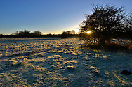 Winter dawn over Cow Common, Chilbolton, Hampshire