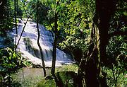 Hummingbird Falls runs through jungle - Belize