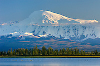 Mount Sanford 16,237 ft (4,949 m)  Wrangell-St. Elias National Park Alaska