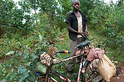 Rwanda. Kibeho. Itinerant vegetable seller with his bicycle laden with garlic, cabbage and sacks of vegetables.