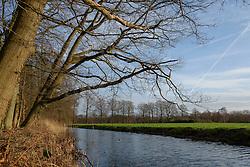 Gooilust, Bos van Blaauw, 's-Graveland, Wijdemeren, Noord Holland, Netherlands