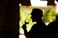 Bella Vineyards & cave tasting room in Healdsburg CA. Photo Brian Baer.