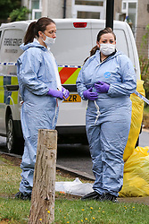 © Licensed to London News Pictures. 05/08/2019. London, UK. Forensic officers on Waltheof Gardens in Tottenham, north London following a death of a woman in 46 Waltheof Gardens. Police were called around 10:45 am on 4 August 2019 where the body of an 89-year-old woman was found. According to the police one or more suspects gained entry to the woman's house between Saturday (3 August) evening and Sunday (4 August) morning. Photo credit: Dinendra Haria/LNP