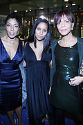 """r to l: Sylvia Rhone and Guests at """" The Obama That One: A Pre-Inagural Gala Celebrating the Victory of President-Elect Obama celebration held at The Newseum in Washington, DC on January 18, 2009  .."""