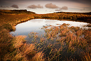 A line of fluffy grey clouds puffed along the horizon like a Thomas the Tank Steam Train. I loved the way the clouds were echoed by the warm tufts of orange grass around the shallow blue lake on this exposed Welsh mountain top. <br /> <br /> © Glyn Davies 2010 - All rights reserved