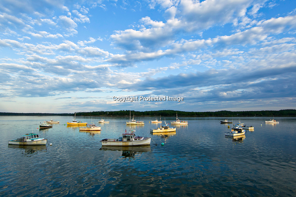 Lobster boats sit in a bay at sunrise on a Sunday morning in Maine.