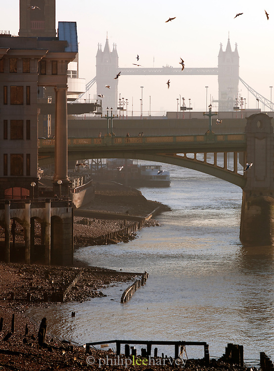 The River Thames at low tide with a view to Tower Bridge in London, UK