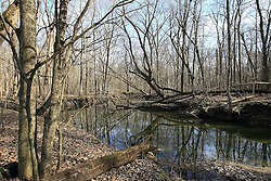 23 February 2008: An unusually warm winter brings temperatures in the high 60's and low 70's to Moraine View State Park in McLean County Illinois.  The creek isn't frozen and the ground is soft and close to muddy in stead of solid and frozen