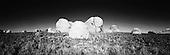 Stock Photos of Rocks by Paul Foley - Lightmoods