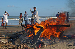 Unidentified bodies are cremated on the beach January 2, 2005 in Nagapattinum, Tamil Nadu after  tsunamis  ravaged the coast of India and Asia  .