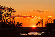 The setting sun shines over a marsh in the Chincoteague National Wildlife Refuge on Assateague Island, Virginia.