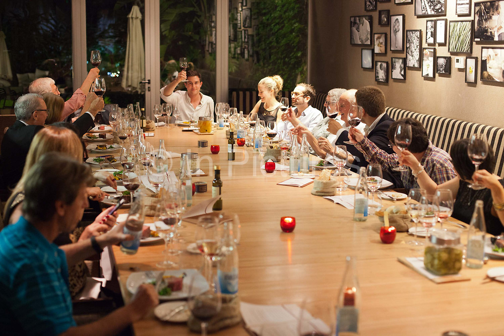 Diners making a toast, One Table with Hernán Gipponi at the HG restaurant in the Fierro Hotel in Palermo, Buenos Aires, Federal District, Argentina.
