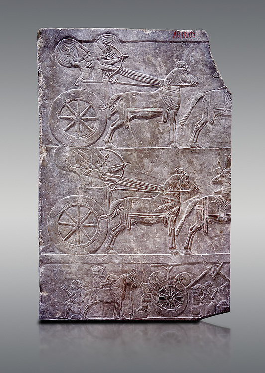 Stone relief sculptured panel of aa Assyrian Chariot. From the palace of Ashurnasirpal II  room VI/T1, Niniveh, third quarter of the 8th century BC. inv 19909  Louvre Museum , Paris .<br /> <br /> If you prefer to buy from our ALAMY PHOTO LIBRARY  Collection visit : https://www.alamy.com/portfolio/paul-williams-funkystock/ancient-assyria-antiquities.html  Refine search by adding background colour, place, subject, museum etc into the LOWER SEARCH WITHIN GALLERY box to <br /> <br /> Visit our ANCIENT ASSYRIAN PHOTO COLLECTIONS for more photos to download or buy as wall art prints https://funkystock.photoshelter.com/gallery-collection/Ancient-Assyrian-Art-Artefacts-Antiquities-Historic-Sites-Pictures-Images-of/C0000cjRqQyJjLag