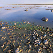 Hudson Bay, tide is out, near Churchill, Manitoba. Canada..Tundra pond near Churchill, Manitoba. Canada.