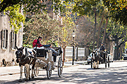 Horse drawn carriages ride down Meeting Street on a cool winter day in Charleston, SC.
