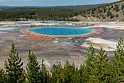 Grand Prismatic Spring the largest hot spring in Yellowstone National Park and third largest in the world. Grand Prismatic is about 250 by 300 feet in size, averages 160 degrees Fahrenheit and is up to 160 feet deep. The bright colors around the spring are from cyanobacteria mats. The Grand Prismatic Spring is part of the Midway Geyser Basin Excelsior Group in Yellowstone, Wyoming. The Excelsior Geyser can be seen behind.