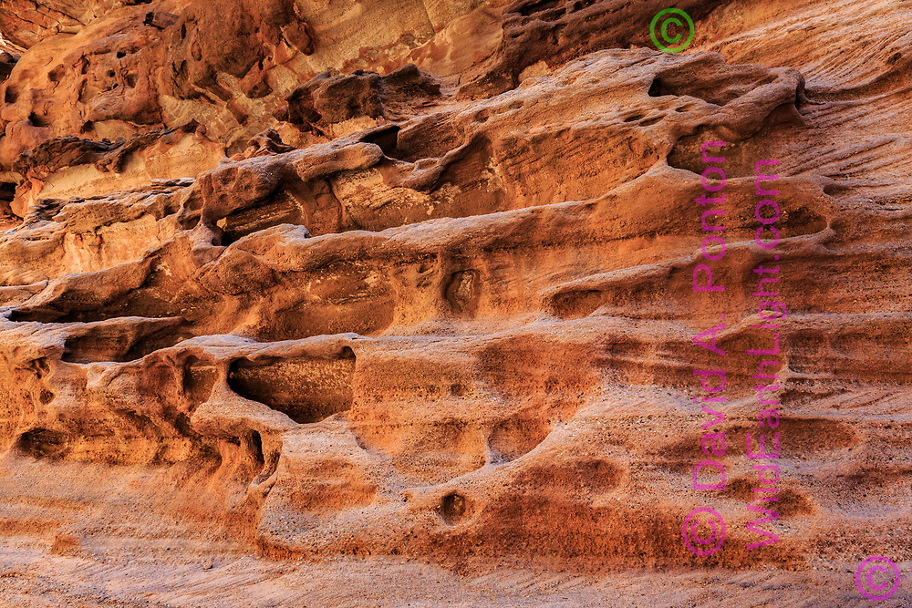 Conglomerate sandstone sculpted by floodwaters in Carbon Canyon, a side canyon of the Grand Canyon, © David A. Ponton