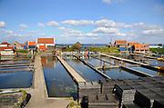 Nederland, Yerseke, 26-3-2016Oesterputten bij de haven waar oesters verwaterd worden na de vangst.Foto: Flip Franssen