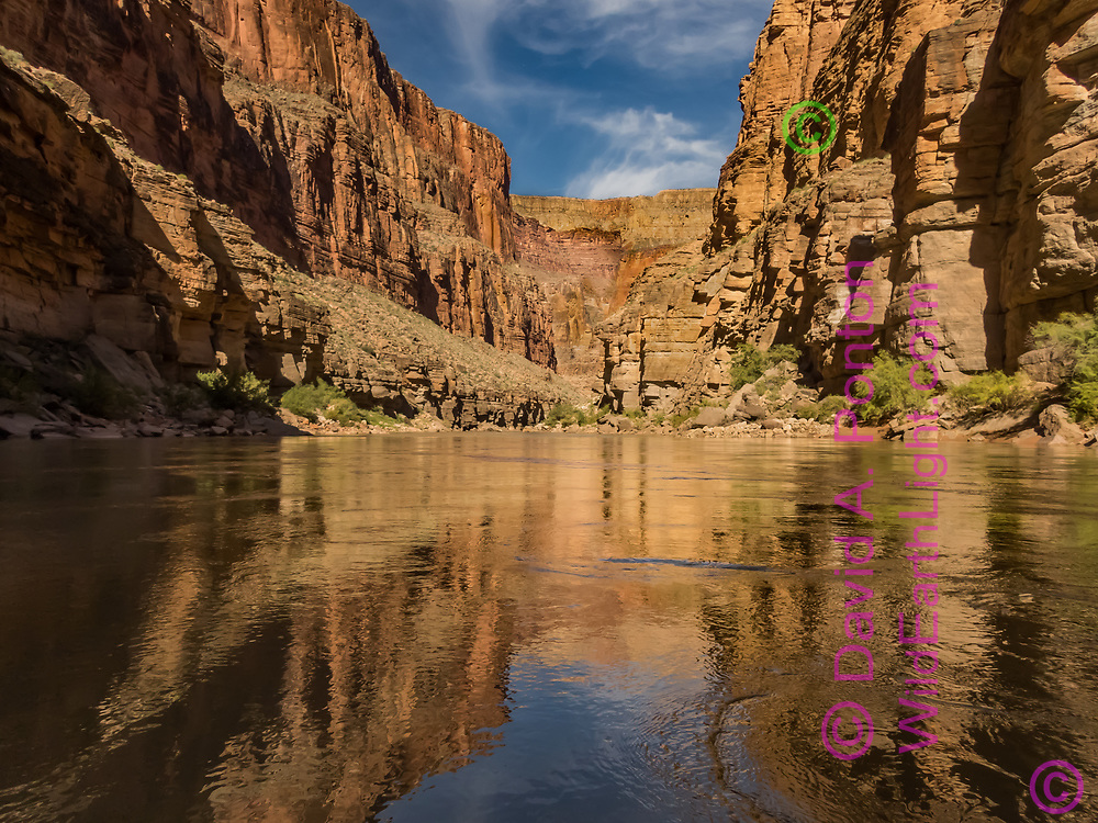 Smooth water of the Colorado River reflects the colors of Mauve Gorge in the Grand Canyon, © David A. Ponton