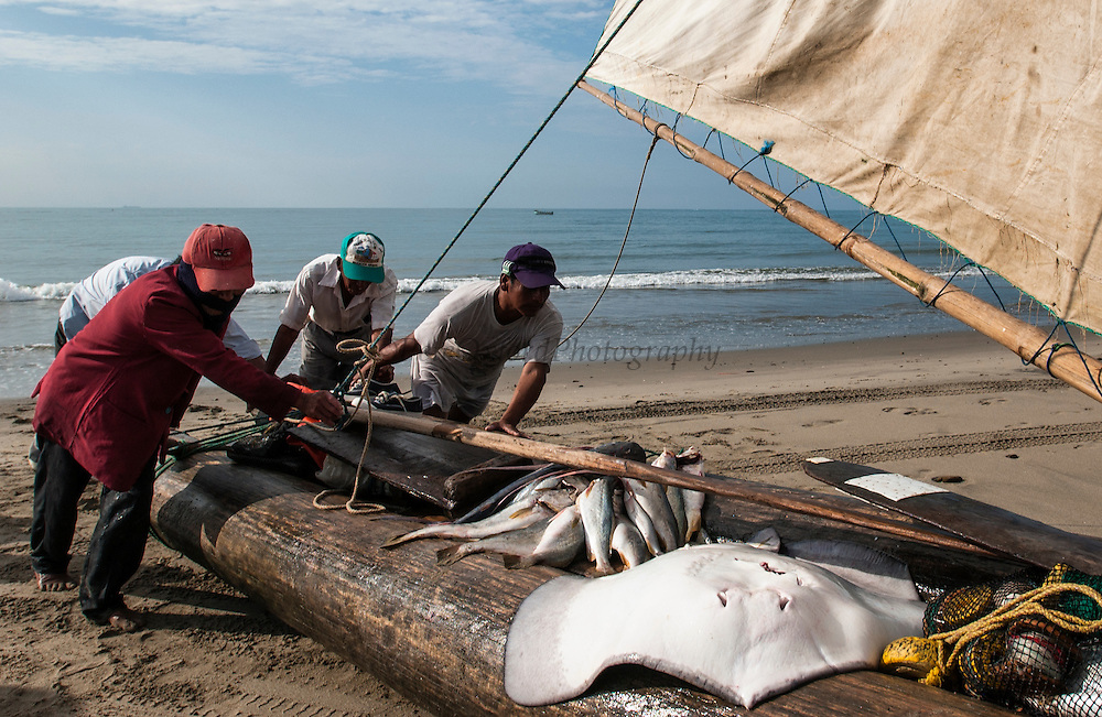 Traditional artesanal Balsa wood fishing raft on shore after a night of fishing<br /> Playas<br /> South Coast<br /> ECUADOR.  South America