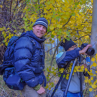 Photographers take pictures of fall-colored aspens in Bishop Creek Canyon in the eastern Sierra Nevada above Bishop, California.