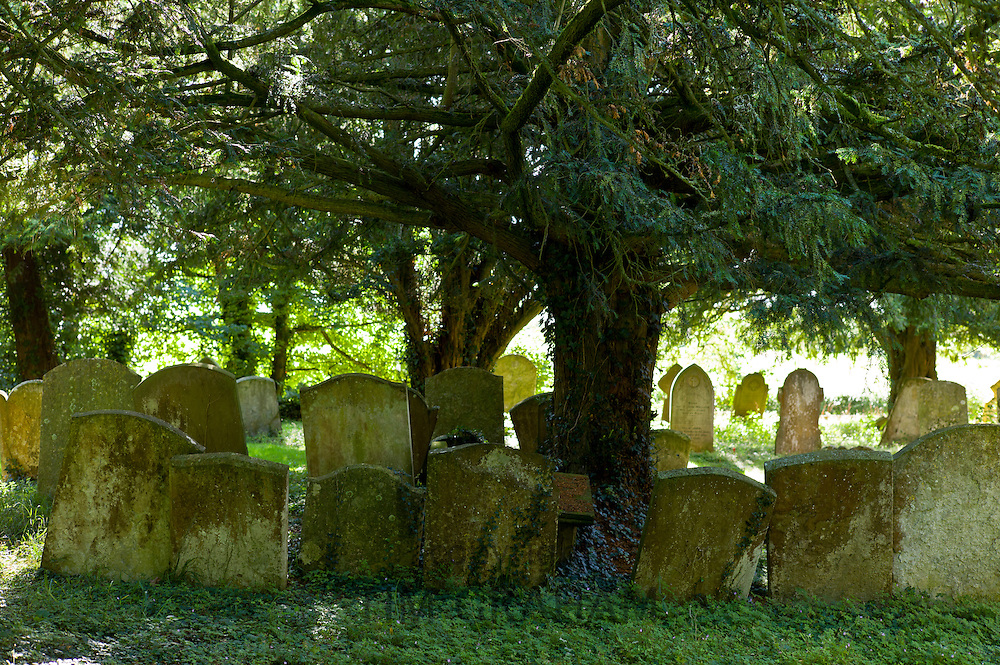 Graveyard in woodland setting at 11th Century St Nicholas Church, Oddington near Stow on the Wold, Gloucestershire