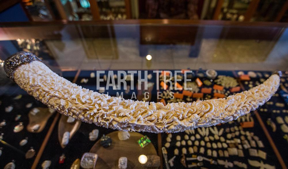 Sumatran ivory on sale on the Island of Bali, Indonesia. Photo: Paul Hilton / Earth Tree Images