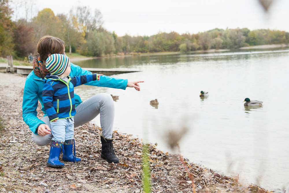 Mother and son pointing at ducks on a lake