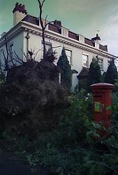 Hurricane damage in 1987.