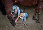 Old Order Mennonites- Shoeing Horses