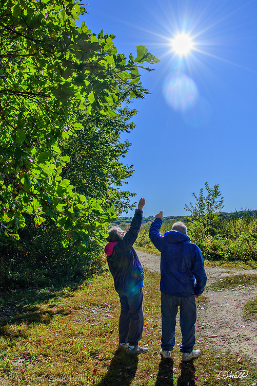 Mom and Dad setting milkweed seeds free to fly upon the breeze on a perfect fall day at Great Meadows National Wildlife Refuge in Concord, Massachusetts.