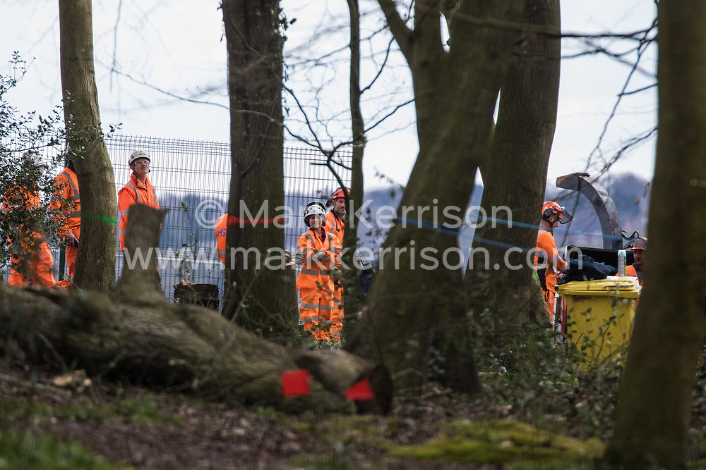 Wendover, UK. 9th April, 2021. HS2 contractors and tree surgeons are pictured at Jones Hill Wood, ancient woodland said to have inspired Roald Dahl, during tree felling operations for the HS2 high-speed rail link. Tree felling work began this week, in spite of the presence of resting places and/or breeding sites for pipistrelle, barbastelle, noctule, brown long-eared and natterer's bats, following the issuing of a bat licence to HS2's contractors by Natural England on 30th March.
