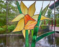 Cut glass daffodil window. Tulip festival at Keukenhof Gardens in Lisse, Netherlands. Image taken with a Nikon D4 camera and 14-24 mm f/2.8 lens.