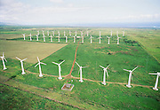 Windmills, South Point, Island of Hawaii